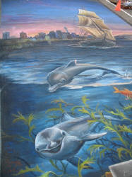 Dolphins in Auckland Harbour pavement art detail Ulla Taylor